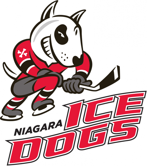 Hamilton Bulldogs vs. Niagara IceDogs at FirstOntario Centre
