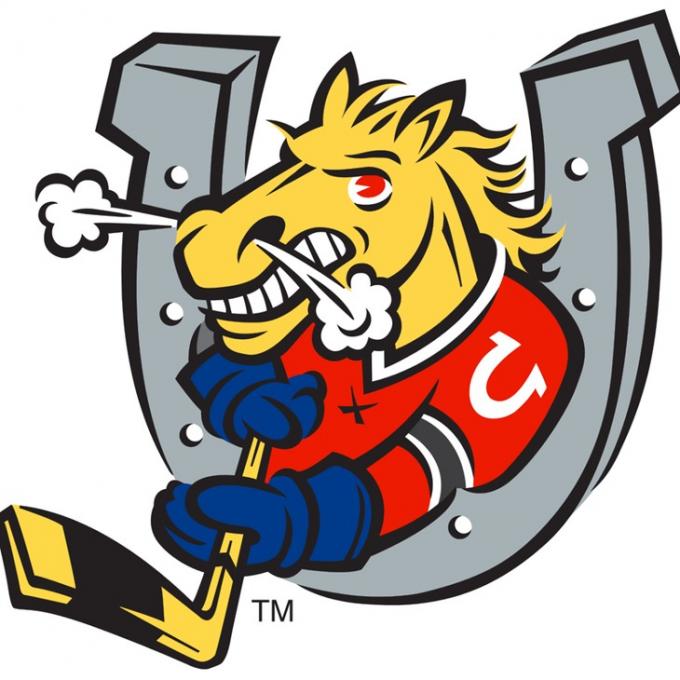 Hamilton Bulldogs vs. Barrie Colts at FirstOntario Centre